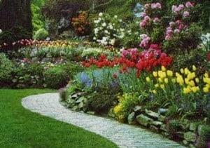 Los colores que dan vida a su jardín.