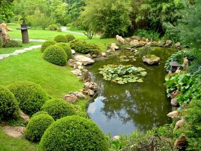 6 pasos básicos para poder construir un estanque del jardín ...