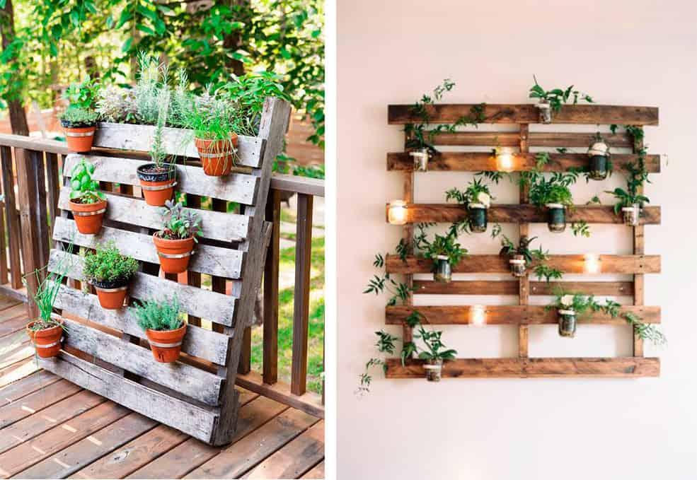 Jardin Verticale guía] haz tú misma un jardín vertical interior - visitacasas