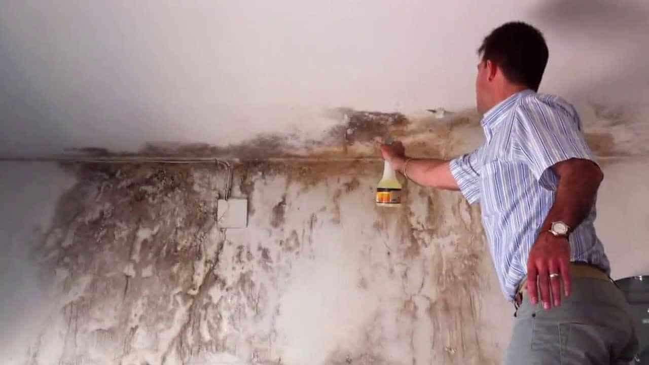 Paredes con humedad 12 probados m todos para solucionarlo - Humedad por condensacion en paredes ...